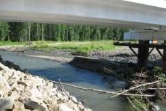 5.Река Лазовая в 25 км от устья, 4 августа 2010