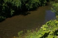 9.Нерестилища на реке Тихая, 4 августа 2010