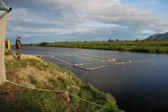 4.РУЗ на р. Мануй (Долинский район) открыт для прохода рыбы, 13 августа 2010 г.