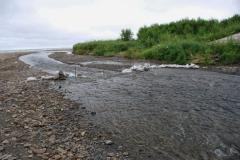 7.Загородка для накопления рыбы на р. Кирпичная, 15 августа 2010 г.