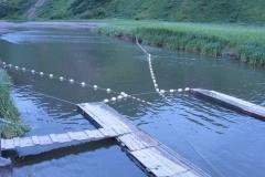 4.Обследование заполнения нерестовых рек с РУЗ, июль 2012