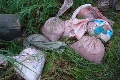 4. Задержание браконьеров на реке Житница, 17 августа 2009