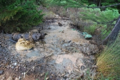 10.Несанкционированный сброс отходов рыбопереработки в Поронайском районе
