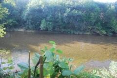 14.Среднее течение 1-2 км выше плотины ЛРЗ