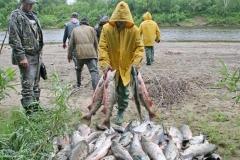 7.Пересчет браконьерского улова. Слева - инспектор рыбоохраны А.Муравьев