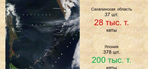 Соотношение лососевых рыбоводных заводов Сахалинской области и Японии