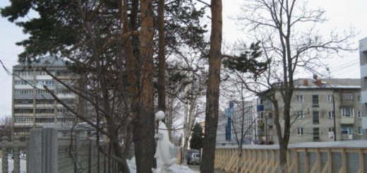 sakhalin tisi PSO